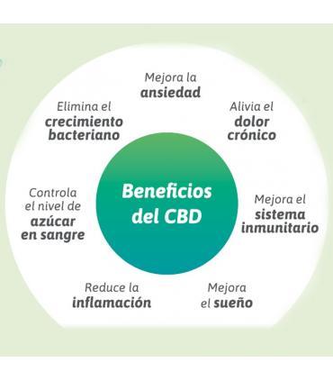 Beneficios fisiocannabis crema con CBD aceite de cáñamo