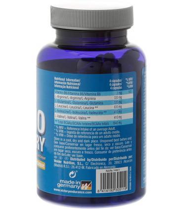 ingredientes amino recovery
