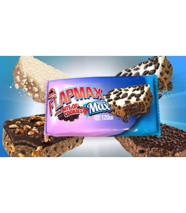 banner Flapmax Max Protein