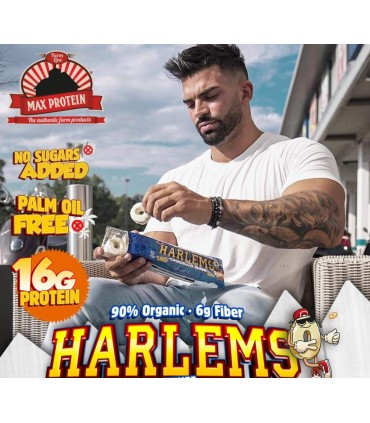 Banner Max Protein Harlems