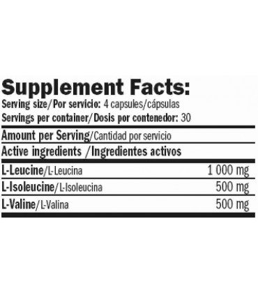 información nutricional amix performance bcaa-xt