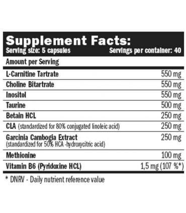 ingredientes Amix Lipotropic Fat Burner