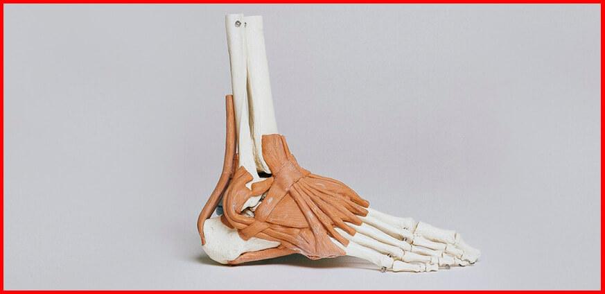 evitar lesiones musculares roturas