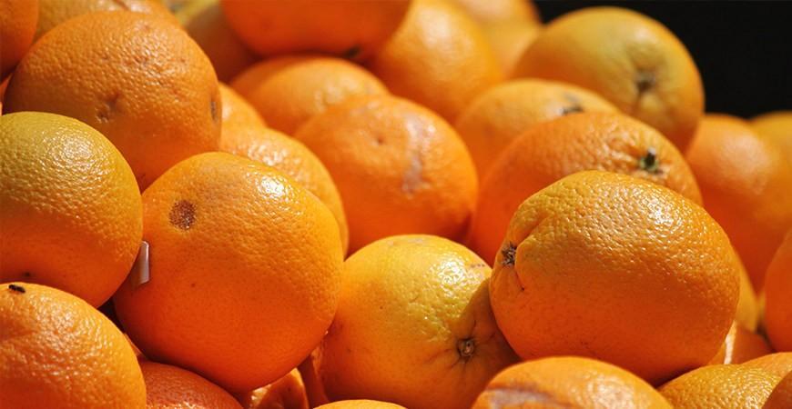 ¿Qué son las Vitaminas y para qué sirven? Toda la información sobre las Vitaminas