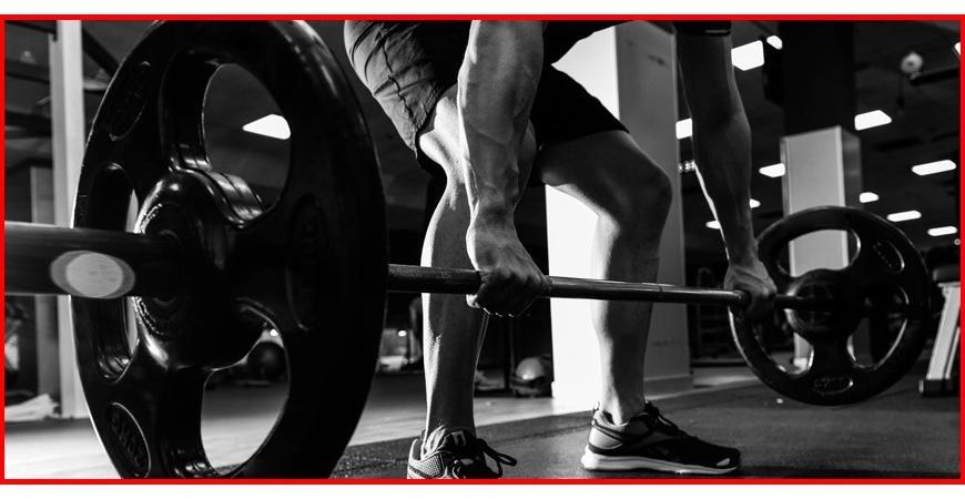 Ventajas de los aminoácidos para la musculación